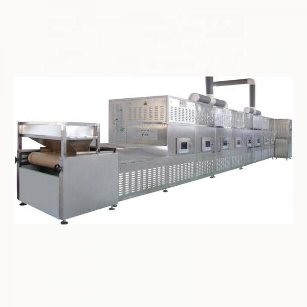 Commerical Microwave Mesh Belt Drying Dryer Machine with Sterilization for Food/Fruit/Vegetable/Chemical/Health Care Products #1 image